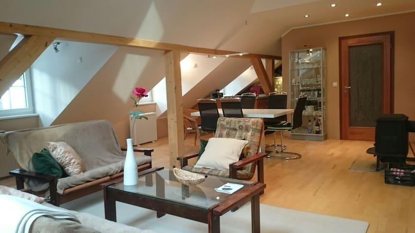 Designový byt v centru 5 minut od kolonády - Mariánské Lázně