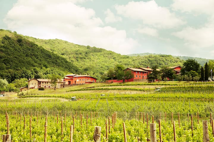 Casa Sassi - Winery stay  - Colloredo di Soffumbergo - 獨棟