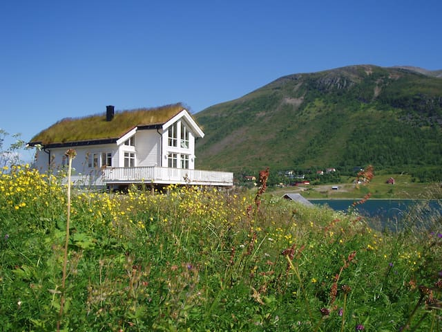 Eurora, Lyngen, Nord-Lenangen, Troms fylke