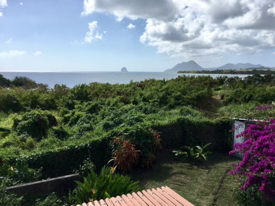 Bed And Breakfast Le Marin Martinique