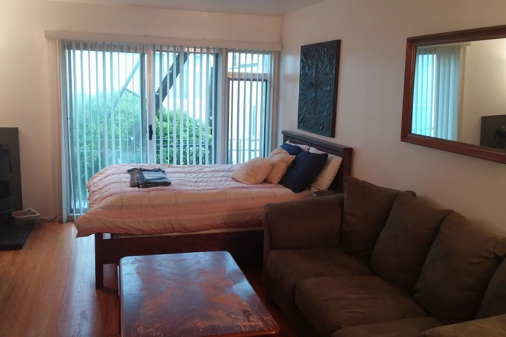 Spacious studio with queen-bed and large comfortable couch