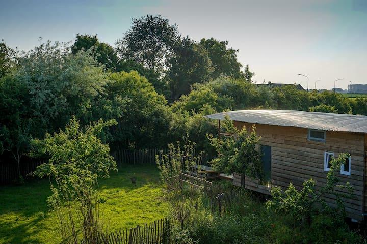 Tiny Huisje op Biologisch Dynamische Boerderij