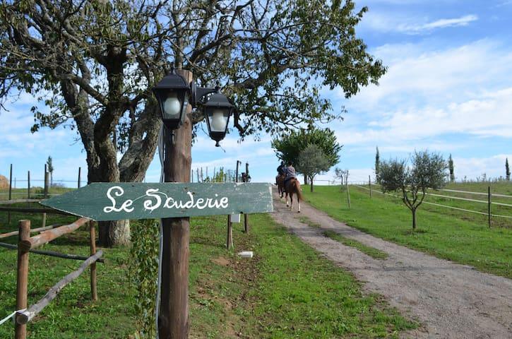 Agriturismo Podere delle Rose Blue - Orvieto - Bed & Breakfast