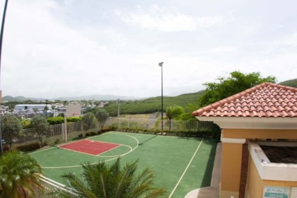 Tennis lovers here you are home