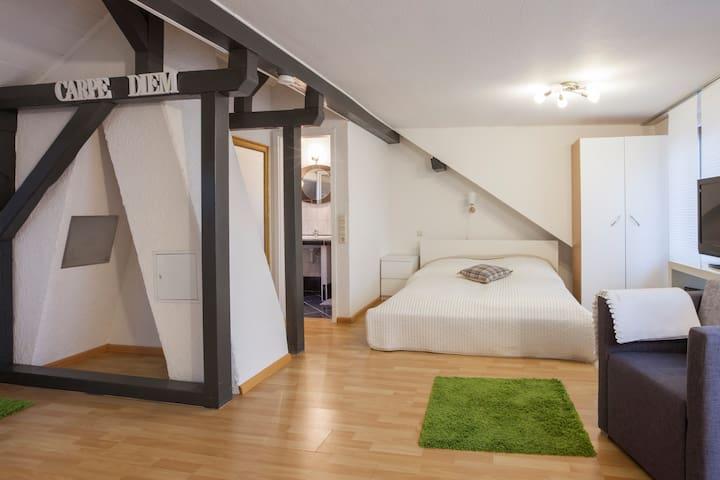 Schönes Zimmer nähe Uniklinik/Messe - Freiburg im Breisgau - House