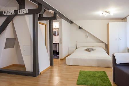 Schönes Zimmer nähe Uniklinik/Messe - Freiburg im Breisgau - Rumah