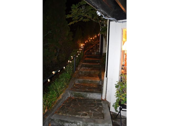 Stairs to the private entrance on side of the house, lights at night.