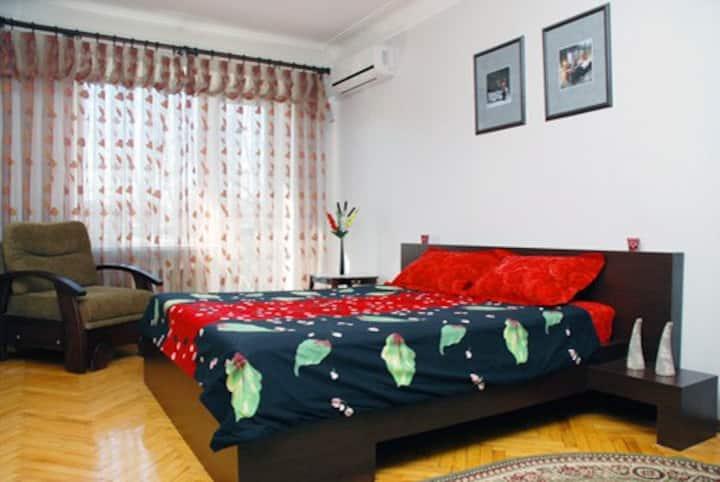 One bedroom apartment, Kiev centre