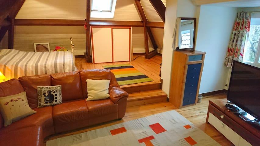 Big room - 40min from Paris - Gif-sur-Yvette - บ้าน