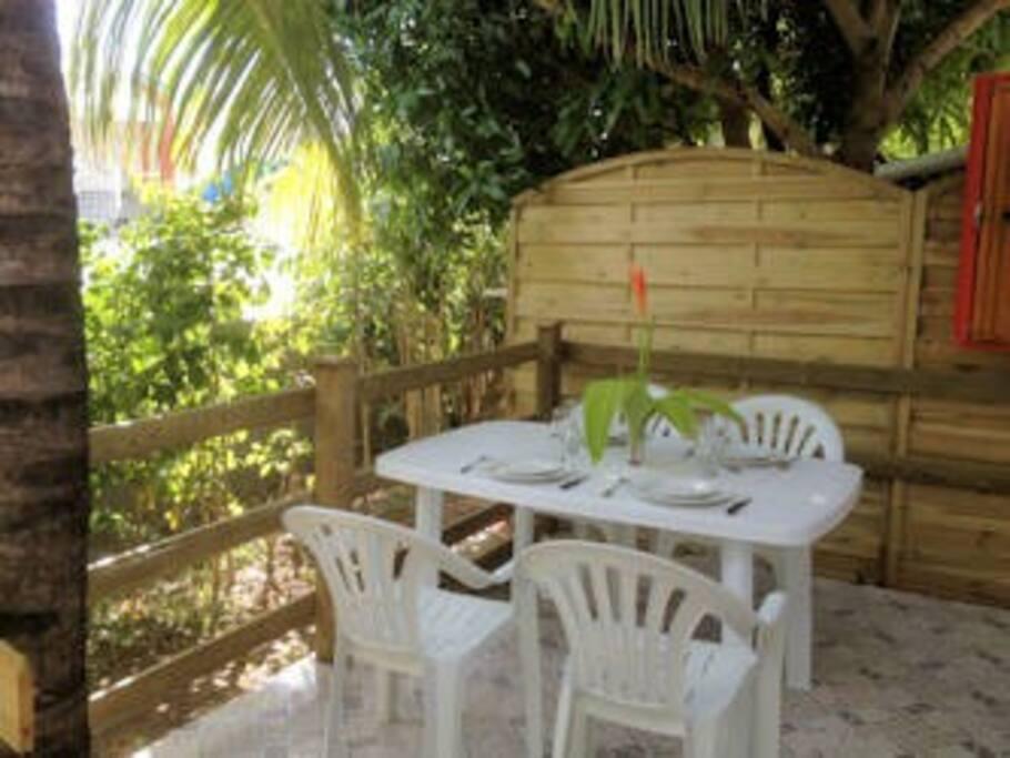 une partie de la terrasse avec son cocotier au milieu
