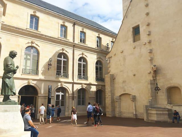 Le musée des beaux art est situé à seulement 100 mètres de l'appartement