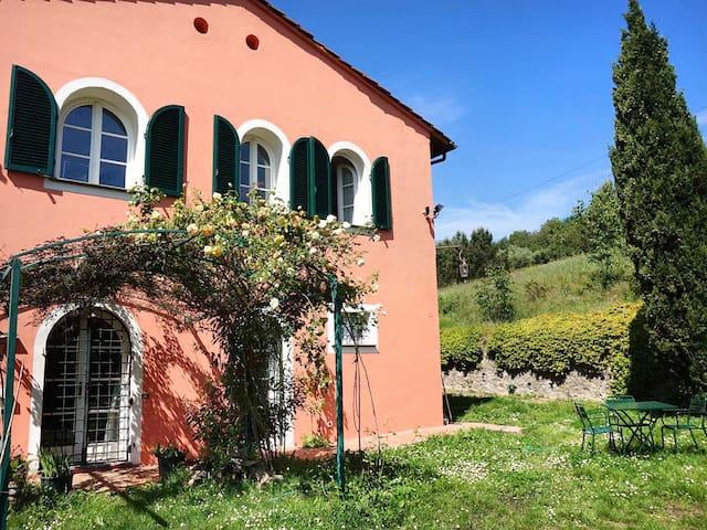 Studio Flat between Lucca and Pisa
