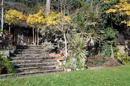 Lago di Como Hidden villa - Vassena, oliveto lario - Casa