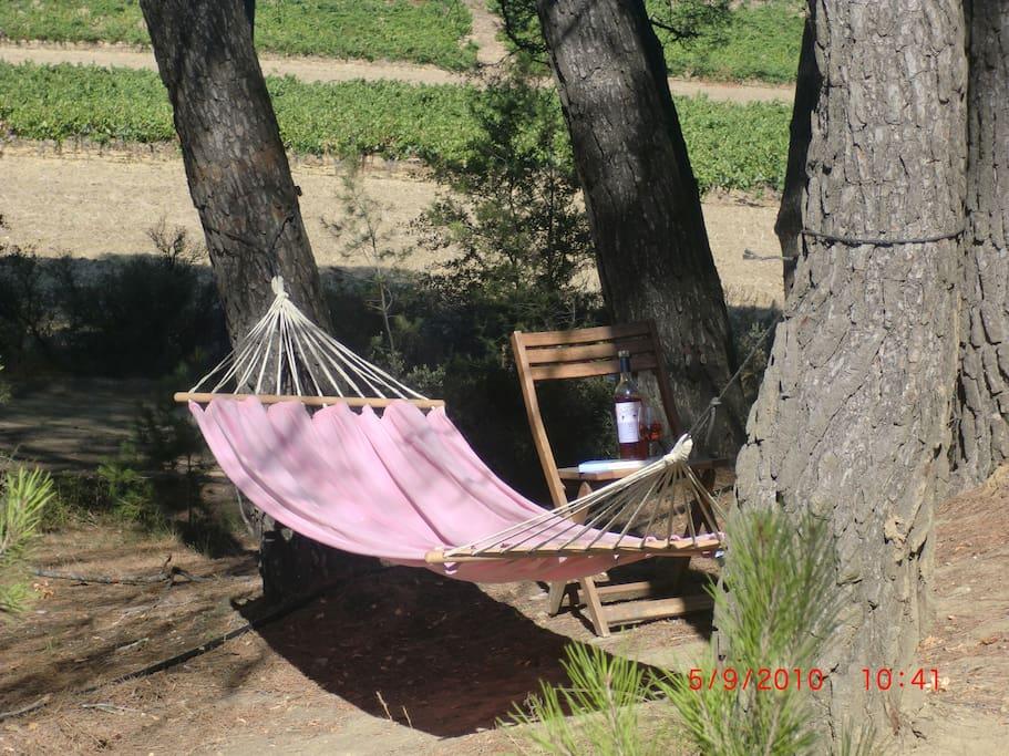 Une cafe ou un verre de vin, un livre... Relax with a coffe, a glass of wine and a book...
