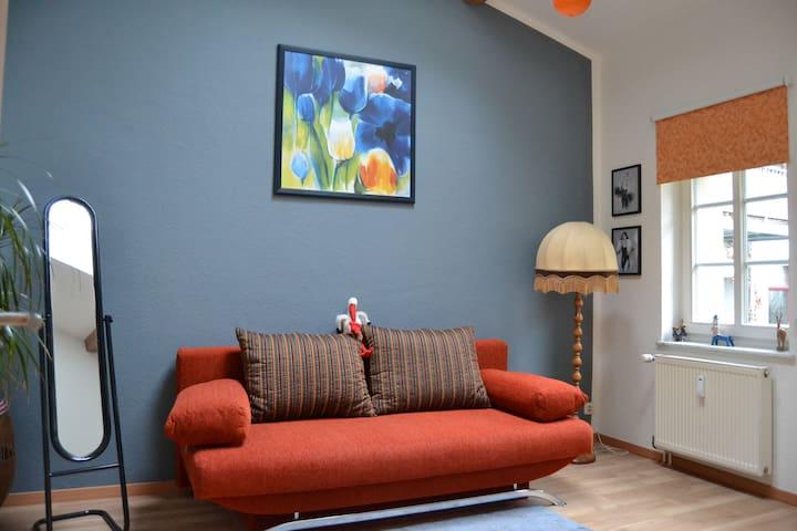 Schönes Zimmer nahe Stadtzentrum - Dresden - Bed & Breakfast