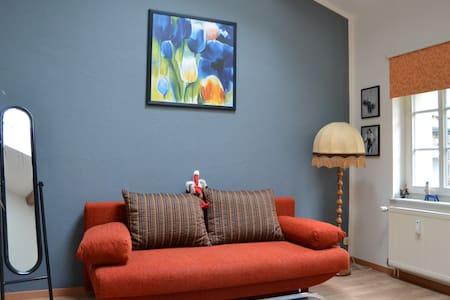 Schönes Zimmer nahe Stadtzentrum - Dresda - Bed & Breakfast