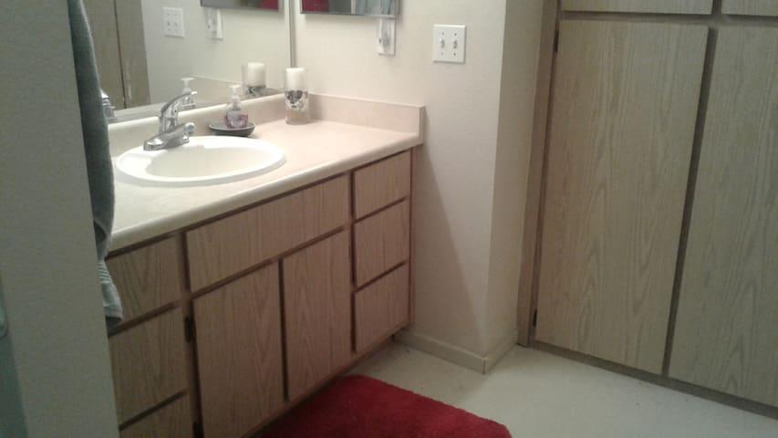 Shared Bathroom Storage
