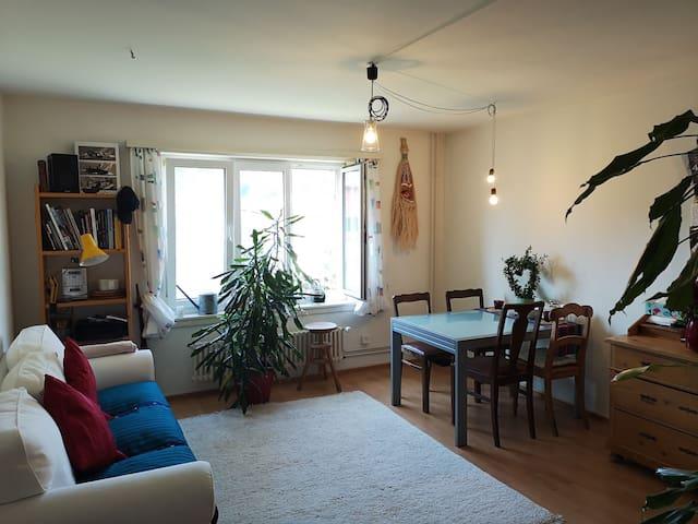 Komplett-möblierte Wohnung mit Massagematratze