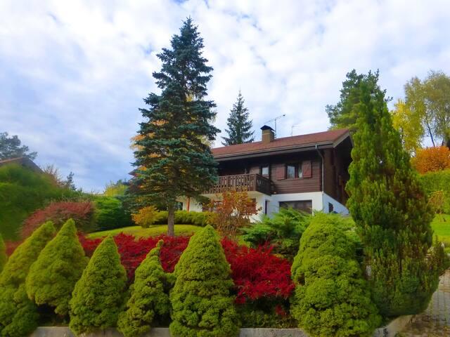 Grand chalet dans le Jura - Barésia-sur-l'Ain - House