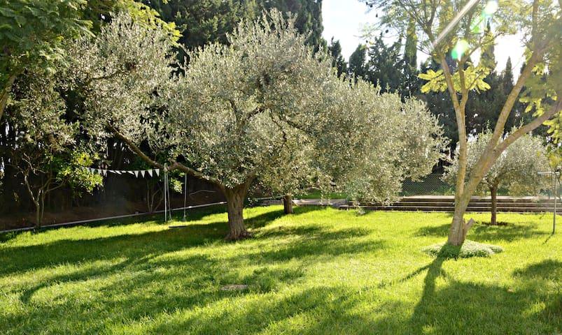 Casa de campo con piscina y amplias zonas verdes - Cádiz - Rumah