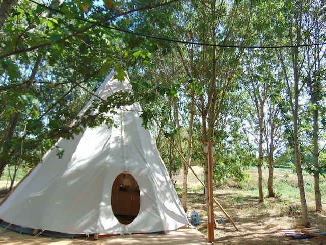 Luxueuze Lakota-Sioux Tipi midden in natuurgebied.