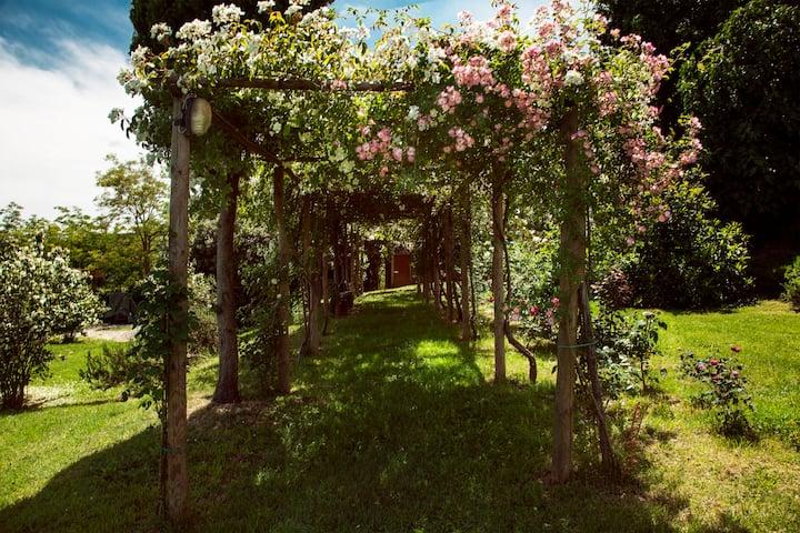 Campitelli luxury and dreamy villa