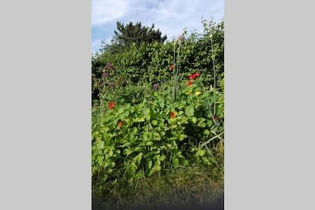 Chambre côté jardin dans maison chaleureuse - Theux