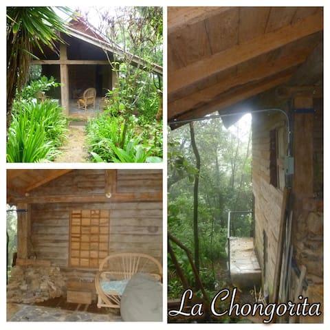 Cabaña La Chongorita - El Cope - Casa de campo
