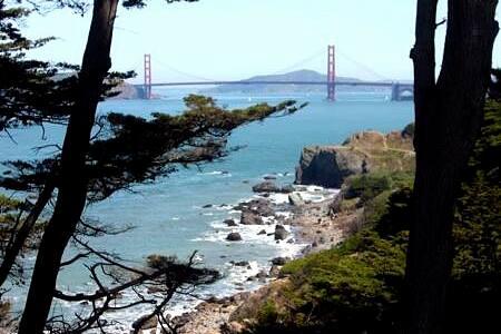 Cozy inlaw next to Golden Gate Park