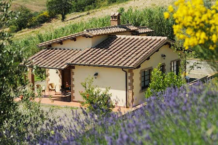 Cottages in Tuscan Country - Cinigiano - House