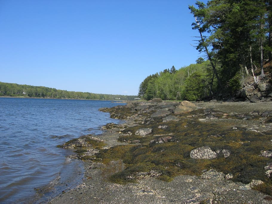 View from the property's shore