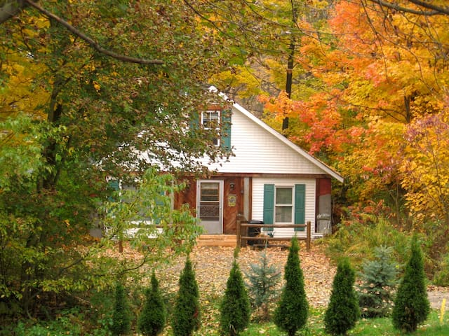 Cosy 4 bedroom lodge with fireplace - Punxsutawney - Cabane