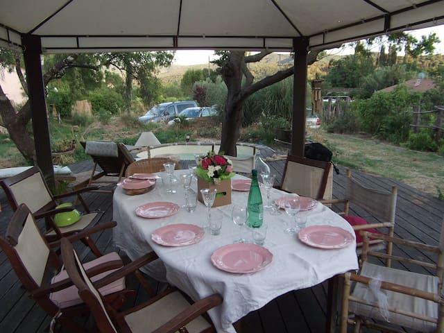 Au milieu des vignes - Carnoules
