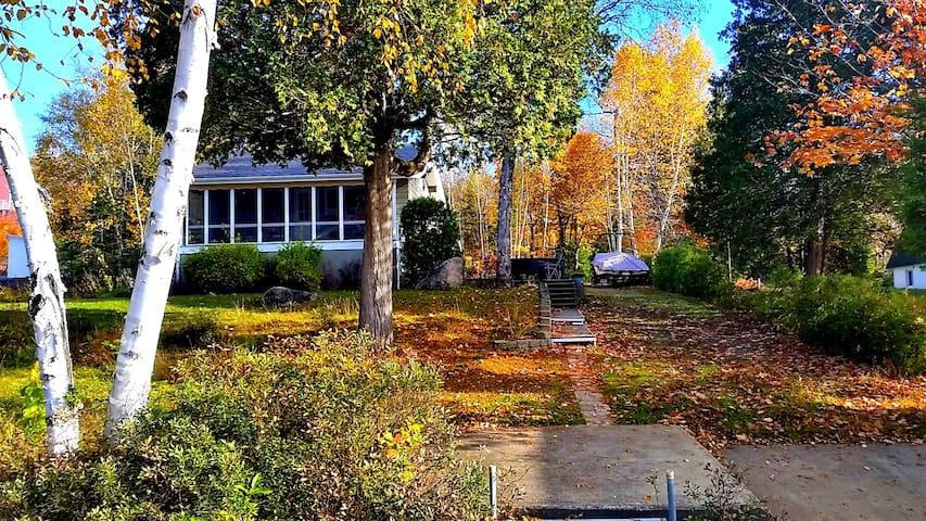 L'automne les couleurs sont magnifiques