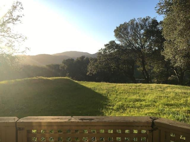 Large 2 bdr, 1ba Quiet Hilltop Apt with Views - San Rafael - Leilighet