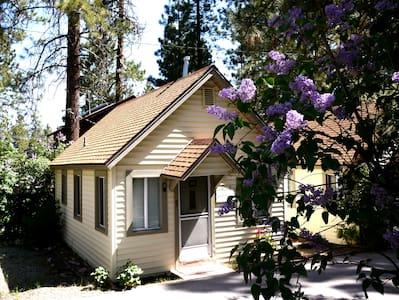Cozy Big Bear Cabin - Wild Flower - Lac Big Bear
