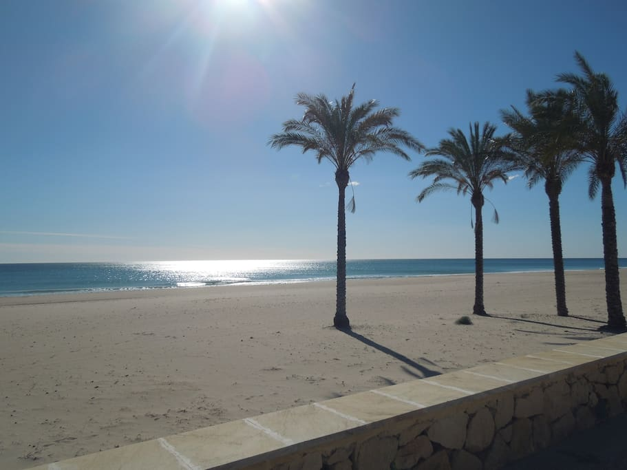 Playa Muchavista beach is just 1 street away, a 2 / 3 min walk near:)