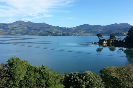 Beautiful Harbour Views - Dunedin - Talo