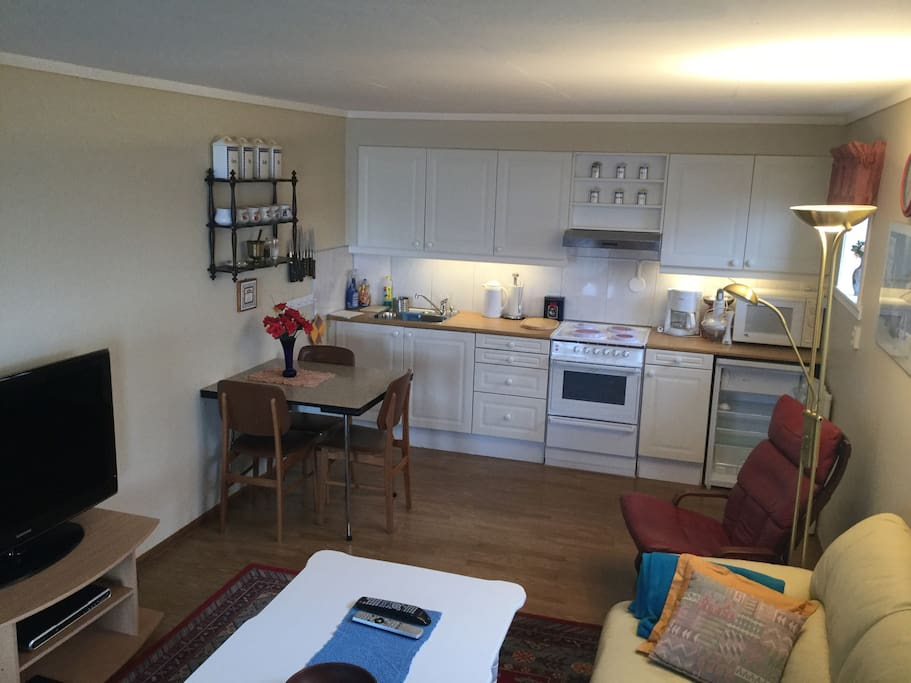 Livingroom with kichen.