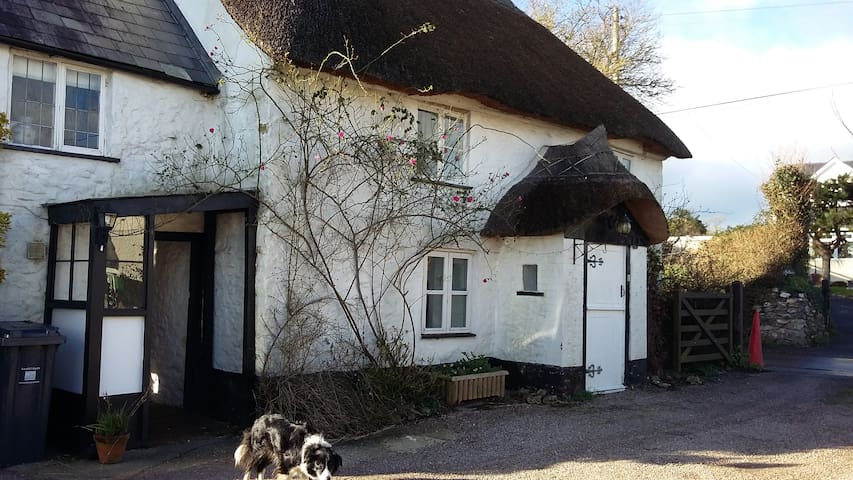Pretty Picturesque Thatched Cottage - Cotleigh - Casa