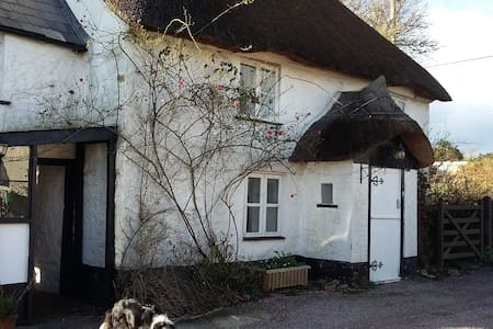 Pretty Picturesque Thatched Cottage - Cotleigh