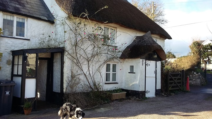 Pretty Picturesque Thatched Cottage