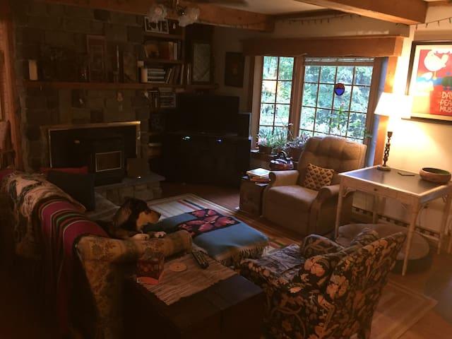 Cozy Catskill Comfort - Hurley - Ev