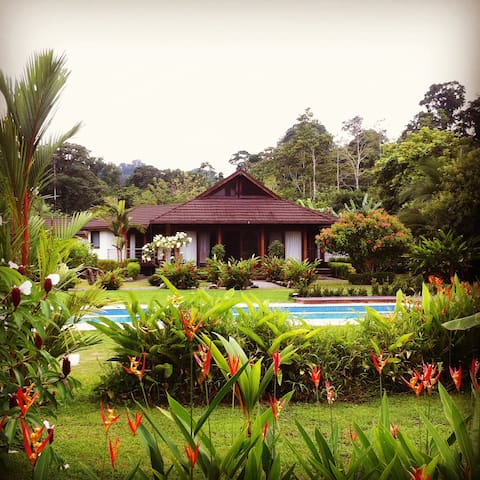 Lilan Nature, Luxury Main House