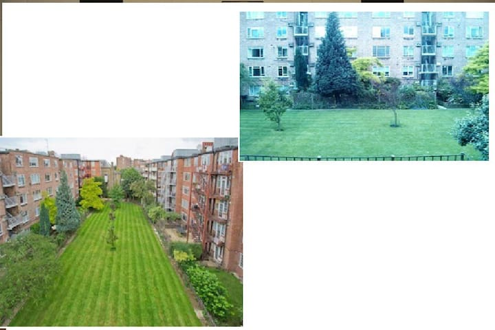 Patio view/ Neighbourhood