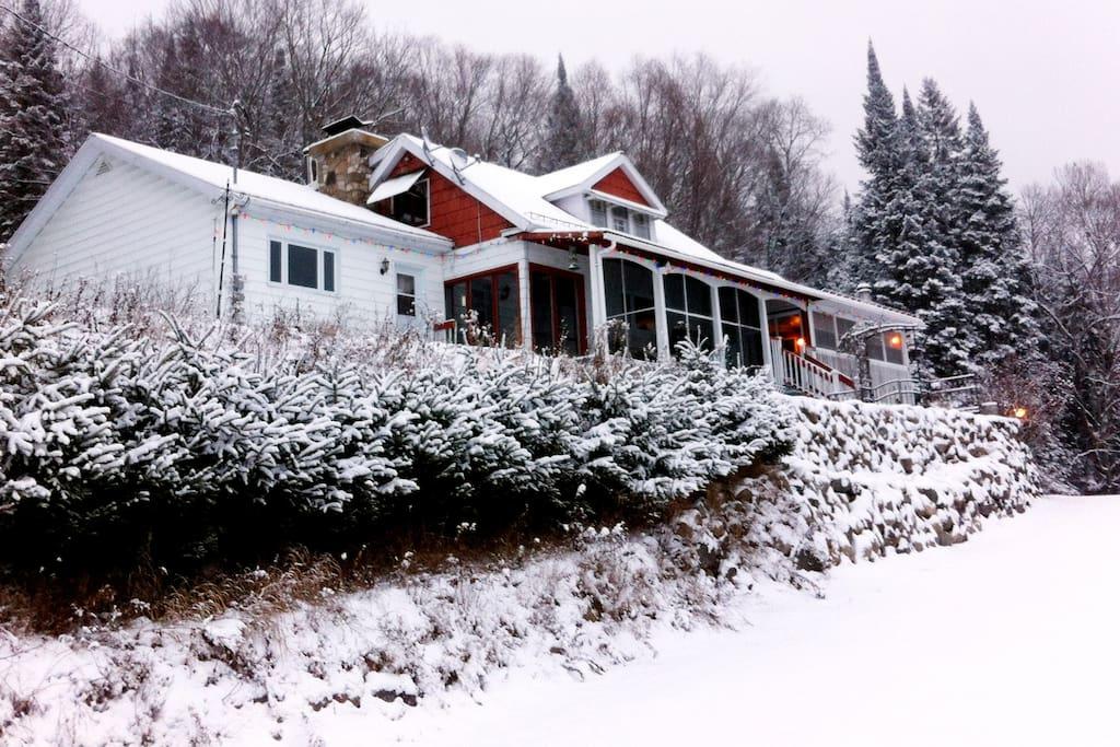 L'hiver est arrivé ! / Winter is here!