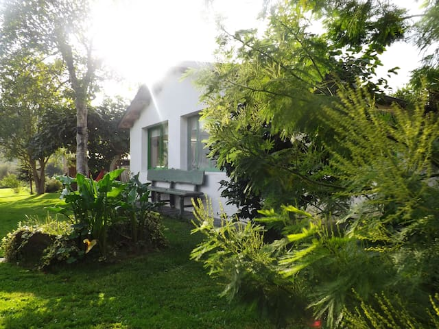 River Garden Cottage - Ortigueira - Guesthouse