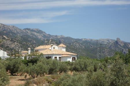 House Sierra Cazorla- Villa las Talas- Cellar - Pozo Alcón