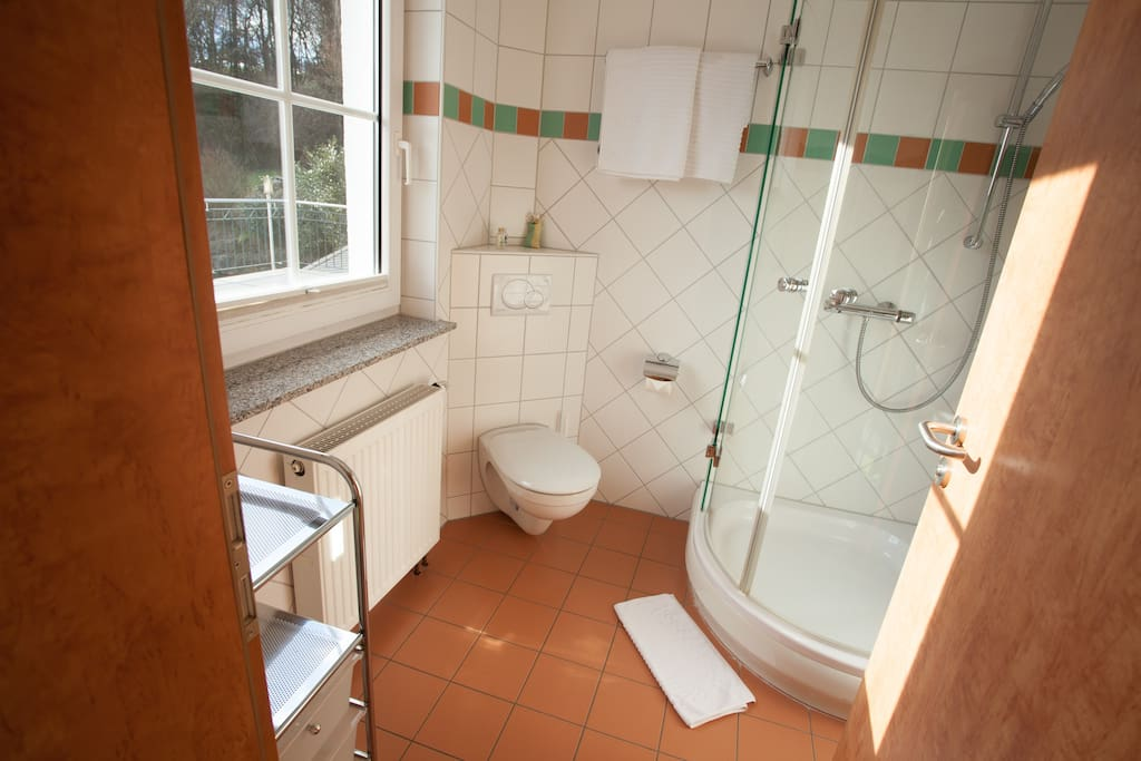 Your own, lightflooded bathroom with free organic shampoo/soap, towles and exerything you need