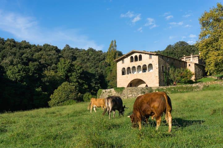 Cabana Callís 2/6 Garrotxa-Pirineus - La Vall de Bianya